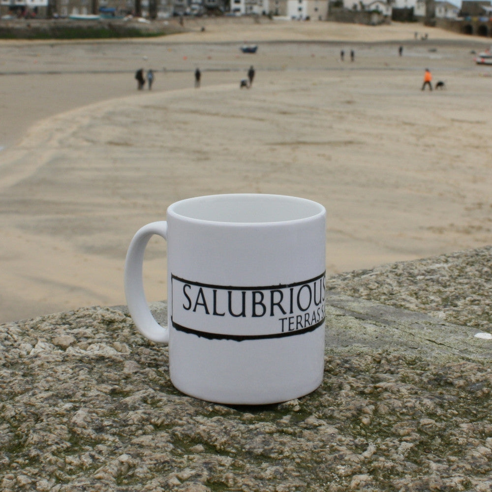 salubrious terrace st ives cornwall street sign mug