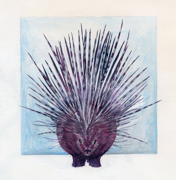 Seventy-three - Porcupine