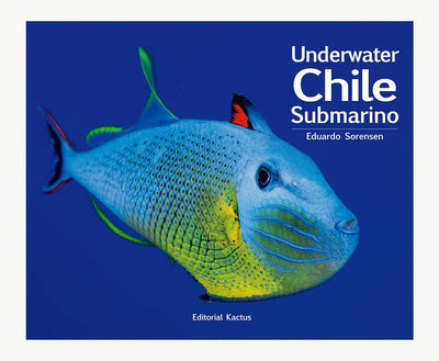 Libro Chile Submarino