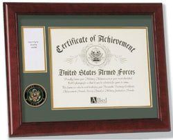 Flag Connections U.S. Army Medal and Award Frame with Medallion -13 x 16.