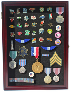 Collector Medal/Lapel Pin Display Case Holder Cabinet Shadow Box (Cherry Finish)