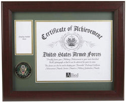 U.S. Army Medal and Award Frame with Medallion -13 x 16