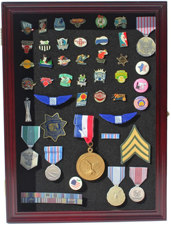 Collector Medal/Lapel Pin Display Case Holder Cabinet Shadow Box  (Cherry Finish).