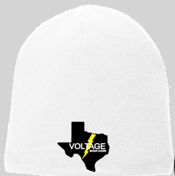 Voltage Embroidered Beenie