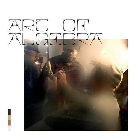ART OF ALGEBRA : ART OF ALGEBRA (2020) LP IRISH INIDE RELEASE