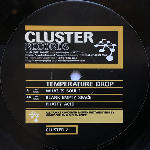 TEMPERATURE DROP : WHAT IS SOUL / BLANK EMPTY SPACE / PHATTY ACID (1996) 12INCH ( NEAR MINT ) TECHNO / ACID