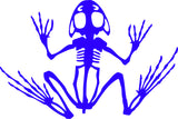 FROG SKELETON DECAL