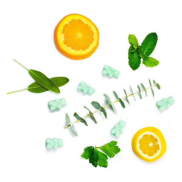 Eucalyptus Spearmint 2 Oz. Sample Pouch - Fun shapes make mixing and melting a breeze!