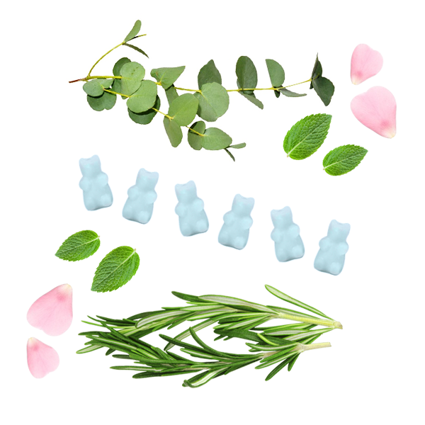 Focus - Aromatherapy Wax Melts - Happy Wax Soy Wax Melts - All Happy Wax melts are made with 100% all natural soy wax. Use our scented wax melts in any wax melt, cube, or tart warmer. Enjoy hours of flame-free home fragrance.