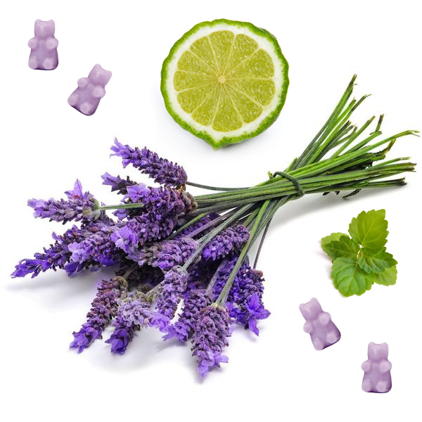 Calming Lavender 2 Oz. Sample Pouch - Fun shapes make mixing and melting a breeze!
