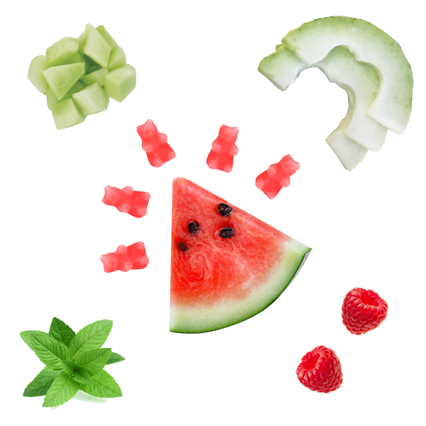 Half Pounder Watermelon Mojito Wax Melts - All Happy Wax scented wax melts are made with 100% all natural soy wax and are infused with essential oils. Perfect for using with your electric wax melt, cube, or tart warmer to deliver flame-free home fragrance! Adorable bear shapes make mixing and melting scented wax melts a breeze!