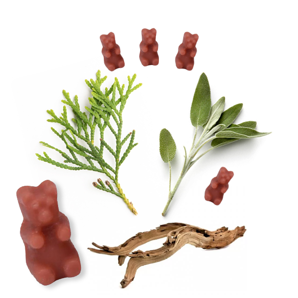 Sage & Cedarwood  2 Oz. Sample Pouch - Fun shapes make mixing and melting a breeze!