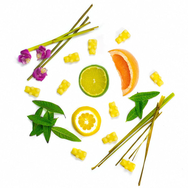 Lemon Verbena 2 Oz. Sample Pouch - Fun shapes make mixing and melting a breeze!