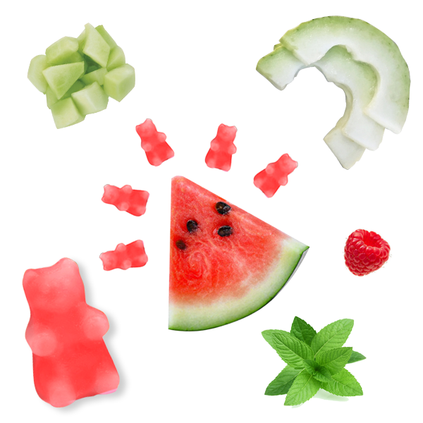 Happy Wax - Watermelon Mojito Wax Melts - All Happy Wax scented wax melts are made with 100% all natural soy wax and are infused with essential oils. Perfect for using with your electric wax melt, cube, or tart warmer to deliver flame-free home fragrance! Adorable bear shapes make mixing and melting scented wax melts a breeze!