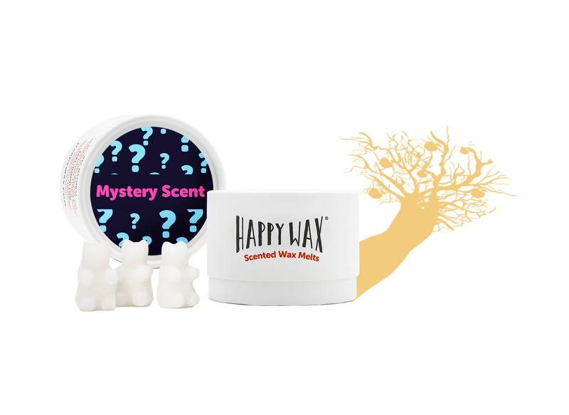 Mystery Scent Wax Melts