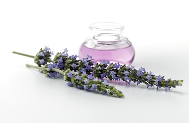 Happy Wax Calming Lavender Scented Car Freshener - All Happy Wax Car Cubs are infused with essential oils, you'll love opening your car door after a long day at work!
