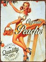 Pin-Up Metal Signs OM