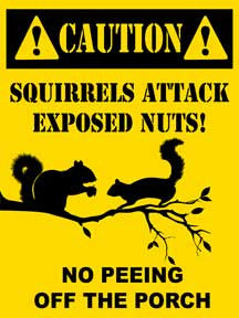 Caution Squirrels Attack