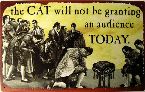 Cat Not Granting Audience