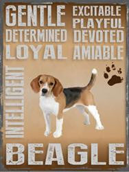 Beagle Metal Sign
