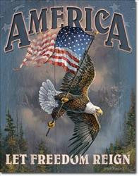 America-Let Freedom Ring