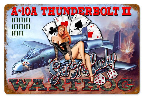 A-10A Thunderbolt ll Pin-Up Metal Sign