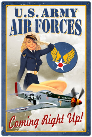 Air Force Pinup (XLarge)