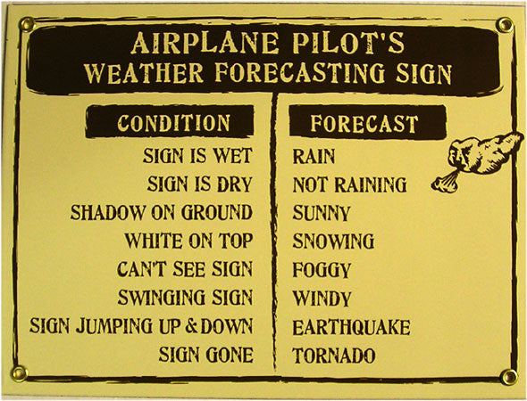 Aiplane Pilot's Weather Forecasting