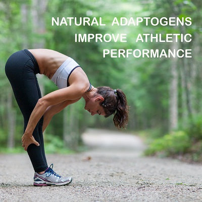Natural adaptogens improve athletic performance