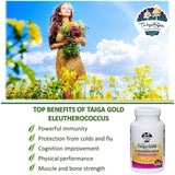 Taiga Gold with Eleutherococcus