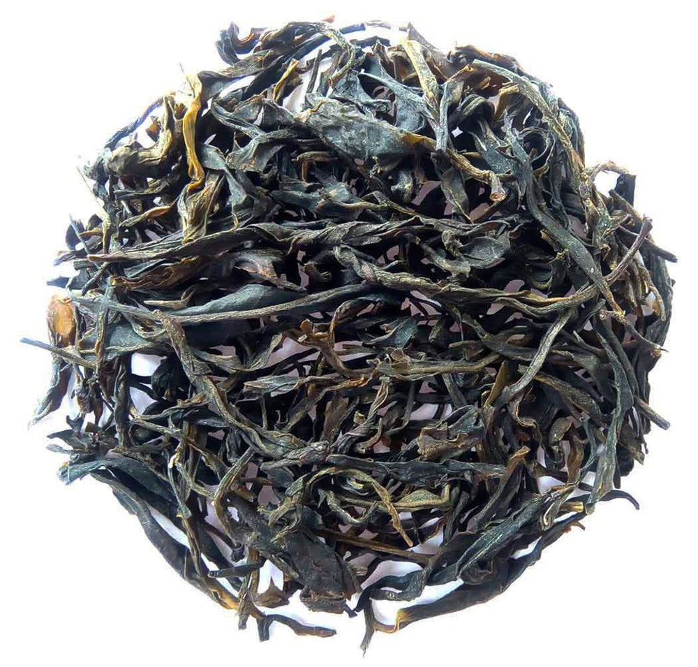 Organic Green Tea : Assam Green Adventure - Wet Leaves