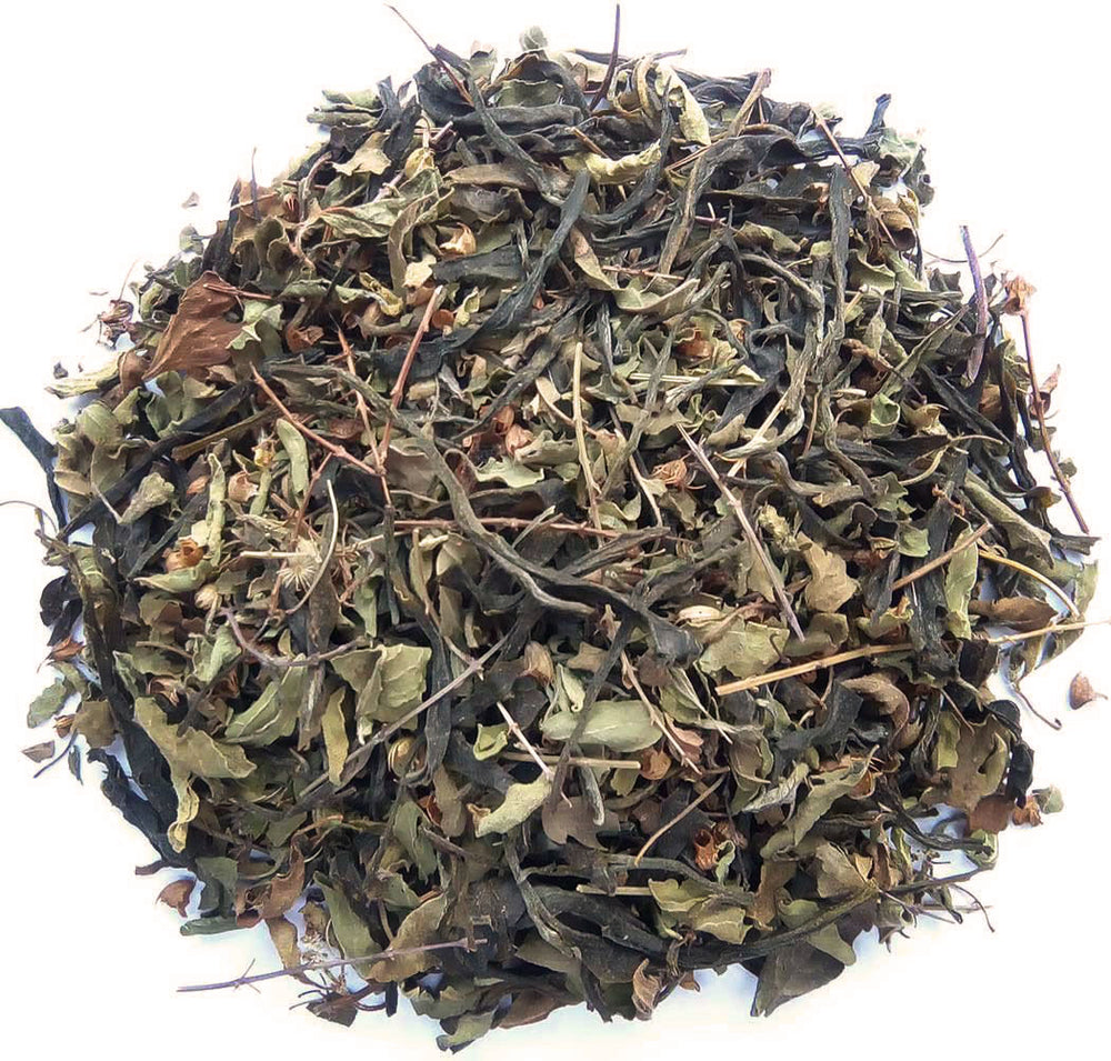Organic Mint Green Tea :: Mint Green Exposure - Dry Leaves
