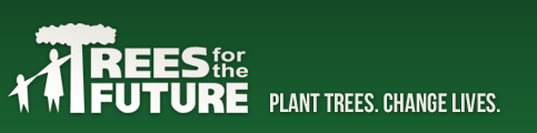 Logo: Trees for the Future
