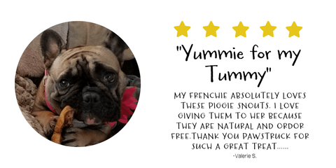 Valerie B. love Pawstruck Pig Snouts for her French Bulldog!