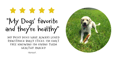 Monica F. is guilt free knowing your dog's treats are healthy as well as tasty