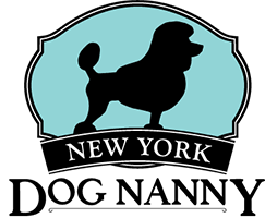 New York Dog Nanny