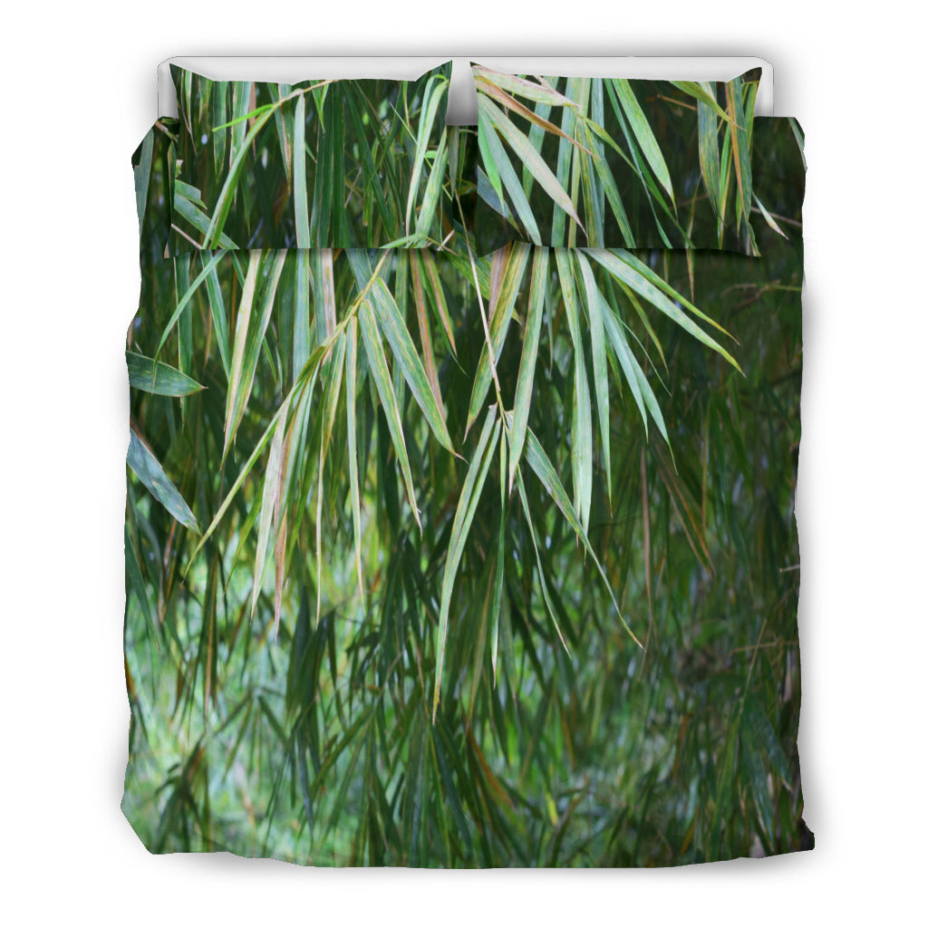 Bamboo in forest