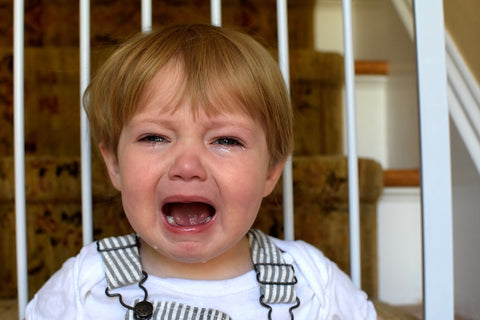image of a toddler child crying