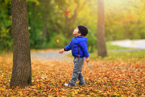photo of a boy walking outside during autumn.