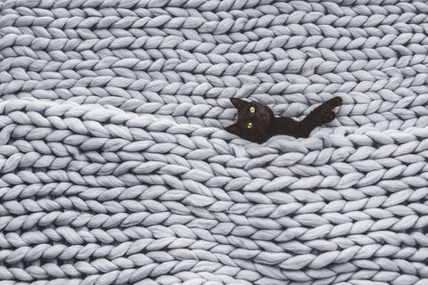 photo of a black cat in a chunky knitted blanket.
