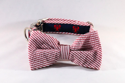 Seersucker lobster preppy dog collar