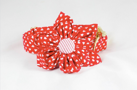 Red hearts girl dog flower bow tie collar valentine's day