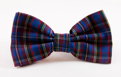Blue Plaid School Boy Dog Bow Tie