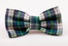 Green and Blue Prep School Plaid Dog Bow Tie