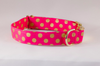 Valentine's Day Pink and Gold Polka Dot Dog Collar