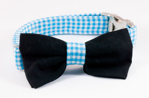 Carolina Panthers Black and Blue Dog Bow Tie Collar