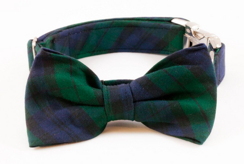 Watch Plaid Bow Tie Dog Collar