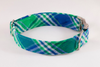 Preppy Green and Blue Madras Plaid Bow Tie Dog Collar
