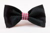 Garnet and Black Gingham Gamecocks Dog Bow Tie Collar