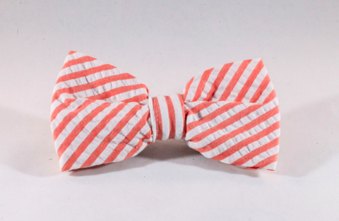 Preppy Coral Seersucker Dog Bow Tie
